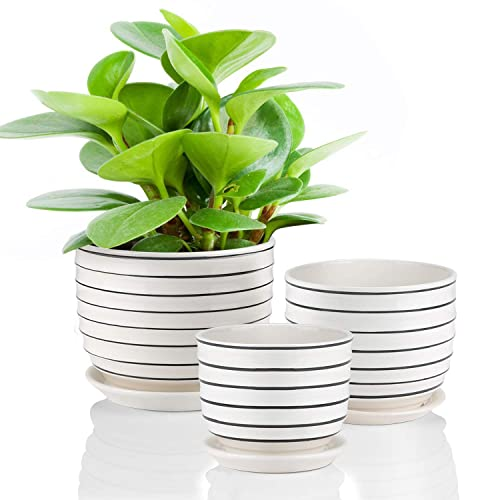 Ceramic Plant Pots Indoor Planters Flower Pots Garden Plants Pots With Saucers Set Of 3 Buy Products Online With Ubuy Lebanon In Affordable Prices B07r956rkg