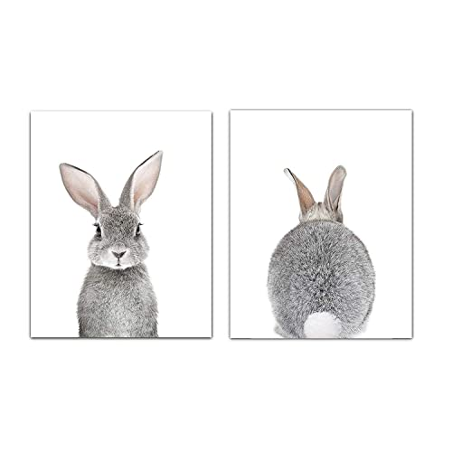 Buy Designs By Maria Inc Baby Nursery Wall Decor Art Set Of 2 Unframed Wall Artwork 8x10 Baby Bunny Front And Back Photographic Print Online In Lebanon B07wcqzwyn