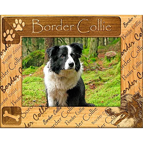 Buy Gwp Border Collie Engraved Alderwood Picture Frame Available In Four Sizes Online In Lebanon B06xnpzff9