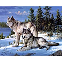 5D Diamond Painting Kits for Adults Full Drill Wolf Rhinestone Embroidery Dotz Craft Cross Stich Gift Home Decor Large Size 40x50cm//16x20inch